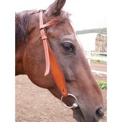 One ear bridle