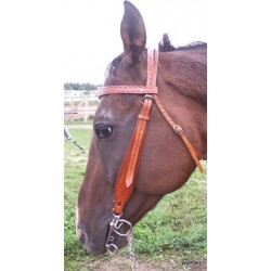 Frontlet bridle 01